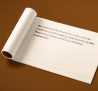Hyza brand strategy - brandbook page example